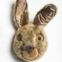 1561388609ws_0053_hare_lewis_front